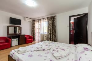 Pensiunea Andrei, Guest houses  Copăcelu - big - 6