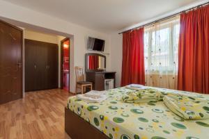 Pensiunea Andrei, Guest houses  Copăcelu - big - 7