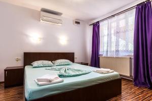 Pensiunea Andrei, Guest houses  Copăcelu - big - 13
