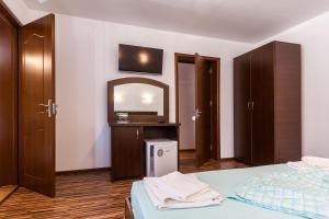 Pensiunea Andrei, Guest houses  Copăcelu - big - 14
