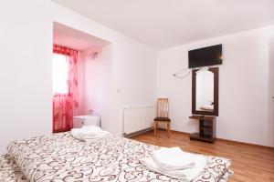 Pensiunea Andrei, Guest houses  Copăcelu - big - 18
