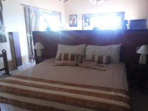 Villa Pelicano, Bed and breakfasts  Las Tablas - big - 54