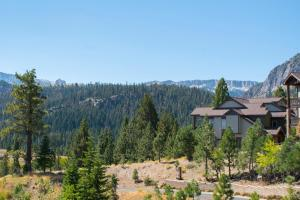 Eagle Run by 101 Great Escapes, Apartmanok  Mammoth Lakes - big - 8