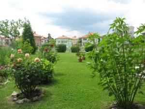 Chateau Aheloy, Apartmánové hotely  Aheloy - big - 84