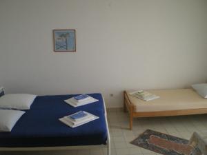 Vila Skocidjevojka, Apartmanok  Petrovac na Moru - big - 10