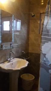 Blooming Dale Hotel, Отели  Сринагар - big - 31