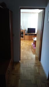 Apartment Blaslov, Appartamenti  Zara - big - 27