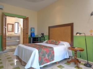 Hotel Luz en Yucatan, Hotel  Mérida - big - 44