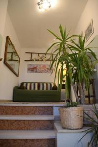 La Balocca, Bed and breakfasts  Montefiascone - big - 39