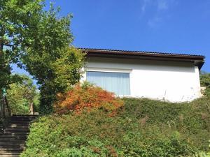 Bad Berleburg, Prázdninové domy  Bad Berleburg - big - 2