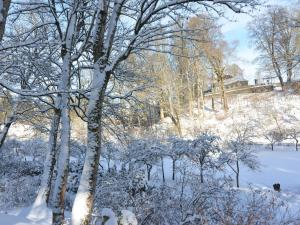 Bad Berleburg, Prázdninové domy  Bad Berleburg - big - 31