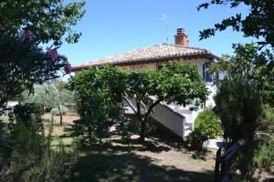 La Balocca, Bed and breakfasts  Montefiascone - big - 22