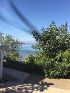B&B Skadar Lake Murici, Bed and Breakfasts  Bar - big - 14