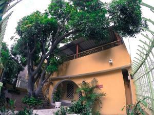 Hostal Etnolounge, Pensionen  Santa Marta - big - 38