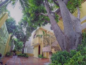 Hostal Etnolounge, Pensionen  Santa Marta - big - 8