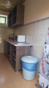 Zhemchuzhinka Guest House, Гостевые дома  Благовещенское - big - 6