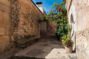 Montserrat, Villas  Costitx - big - 6