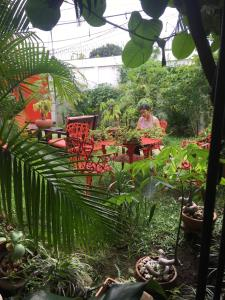 La Posada del Arcangel, Bed & Breakfast  Managua - big - 102
