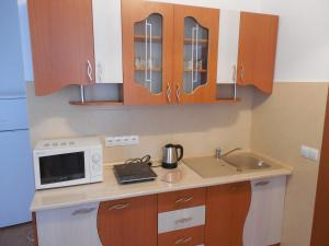 Apartament Anatol, Appartamenti  Sibiu - big - 7