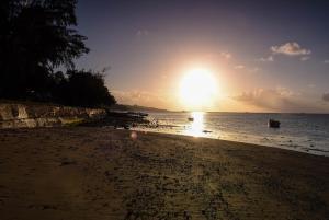 Villa La Romance Kreol, Guest houses  Port Mathurin - big - 38