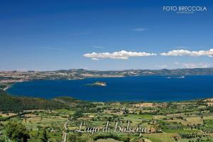 La Balocca, Bed and breakfasts  Montefiascone - big - 34