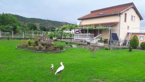 Villa Sonce