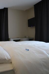 Hotel Astel, Hotely  De Haan - big - 7