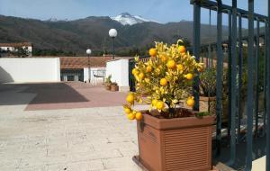 Anjel House Zafferana - AbcAlberghi.com