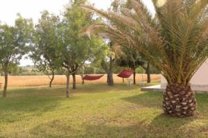 Agriturismo da Remo, Bauernhöfe  Magliano in Toscana - big - 15