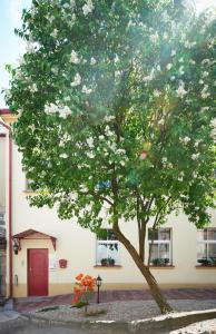Natalex Apartments, Apartmanok  Vilnius - big - 30