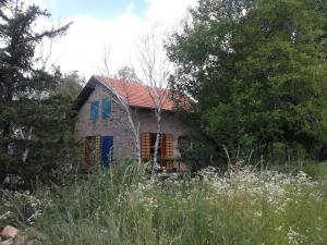 Guest House Vidmar, Гостевые дома  Сремски-Карловци - big - 12