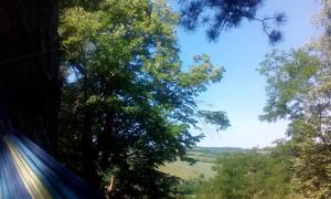 Guest House Vidmar, Гостевые дома  Сремски-Карловци - big - 46