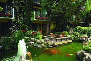Pokój Dwuosobowy z 1 lub 2 łóżkami i widokiem na ogród