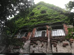 Amami Guest House TegeTege