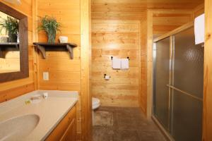Howling Wolf - One Bedroom, Case vacanze  Sevierville - big - 16