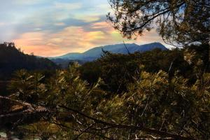 Blessed Nest - Four Bedroom, Holiday homes  Sevierville - big - 7