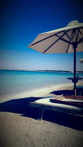 Porto Cesareo Exclusive Room, Affittacamere  Porto Cesareo - big - 101