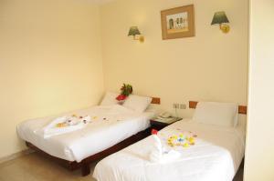 Отель Nile Hotel Aswan, Асуан
