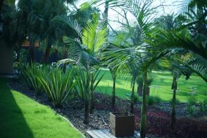 Los Pinos Resort & Spa Termal All Inclusive, Rezorty  Termas de Río Hondo - big - 31