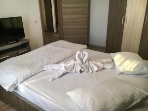 Tanya Apartments Mamaia, Appartamenti  Mamaia Nord – Năvodari - big - 14