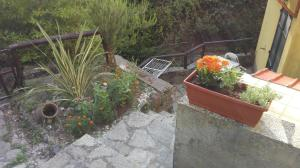 Il Ruscello, Bed & Breakfast  Levanto - big - 21