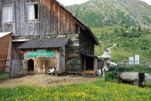 Haus Falkert 360°, Ferienwohnungen  Patergassen - big - 4