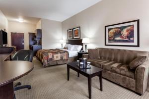 1 King 1 Sofa 1 Bedroom Beds Suite