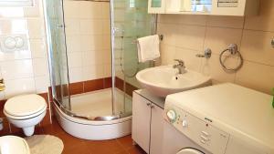 Apartments Simag, Apartments  Banjole - big - 58