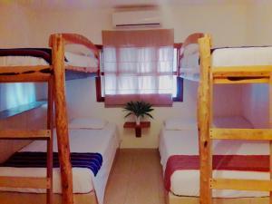 Hostel La Isla Holbox, Hostels  Holbox Island - big - 19