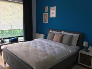 Tampa Gardens - Mountain View Apartment, Ferienwohnungen  Braşov - big - 3