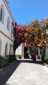 Las Artes, Apartmány  Puerto de Mogán - big - 4