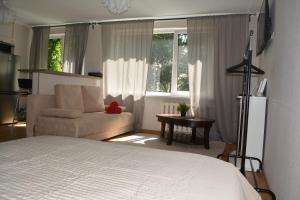 Studio Comfort, Ferienwohnungen  Vilnius - big - 5