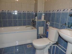 Casa BUCUR, Appartamenti  Tîrgu Ocna - big - 6