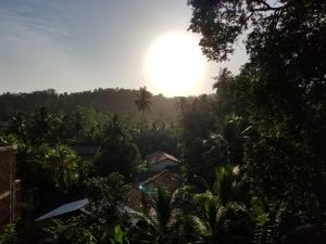 Coral Palm Villa and Apartment, Apartmány  Unawatuna - big - 41